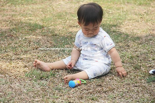 BabyOrganics4_7.jpg