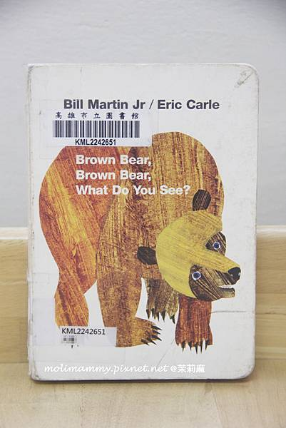 BrownBear1_1.jpg