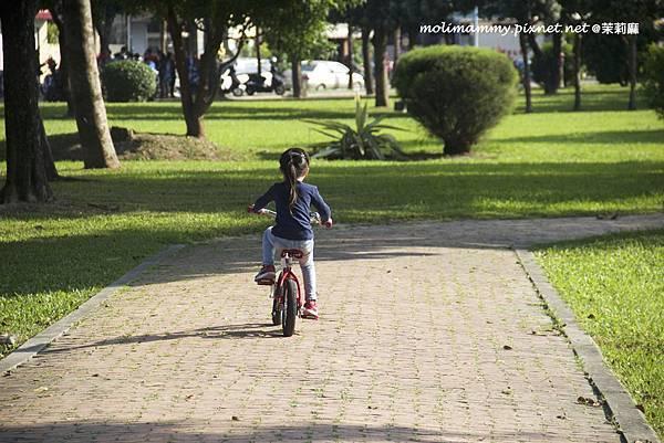 兩輪腳踏車3_5.jpg