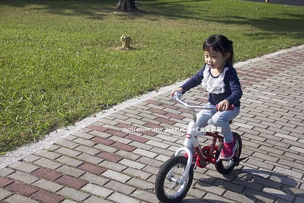兩輪腳踏車4_1.jpg