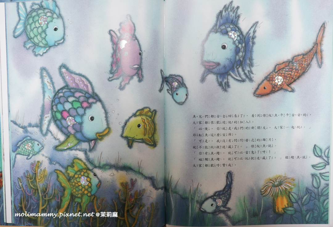 救了條紋魚3_7.jpg