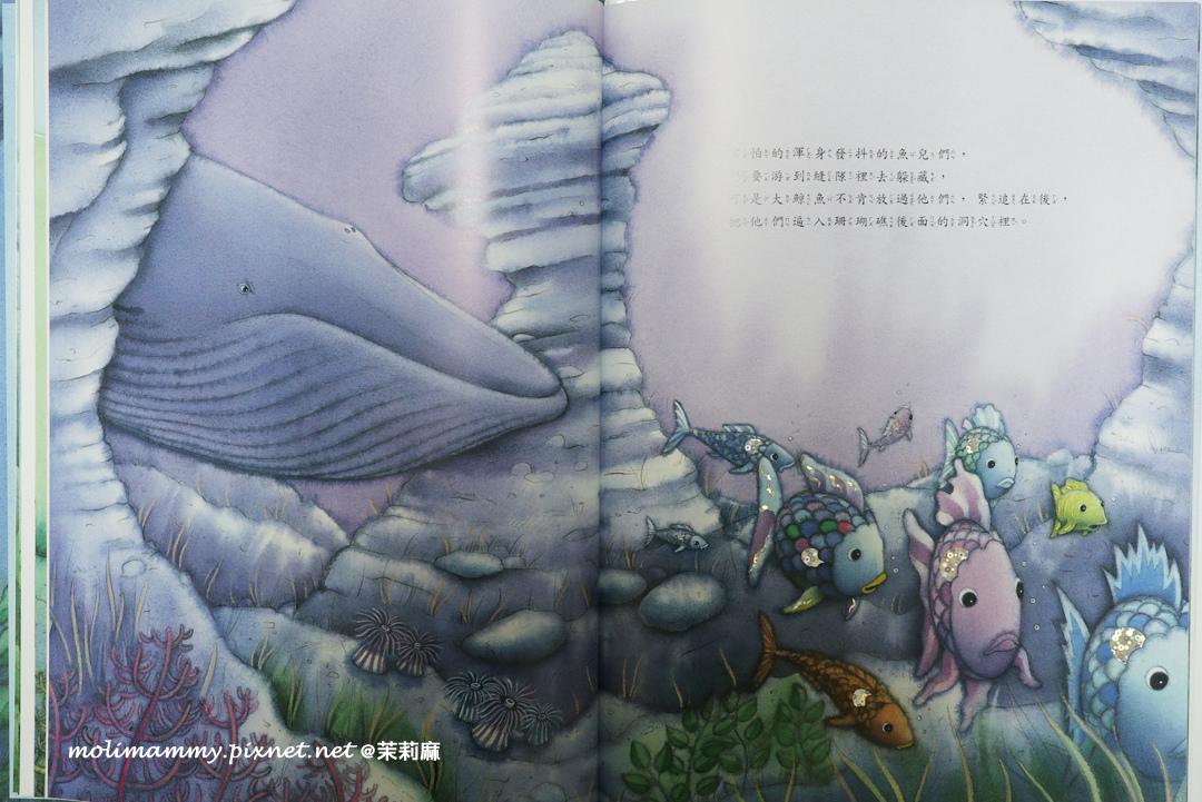 大藍鯨3_1.jpg