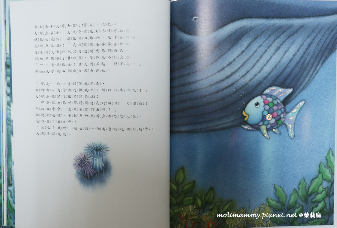 大藍鯨3_7.jpg