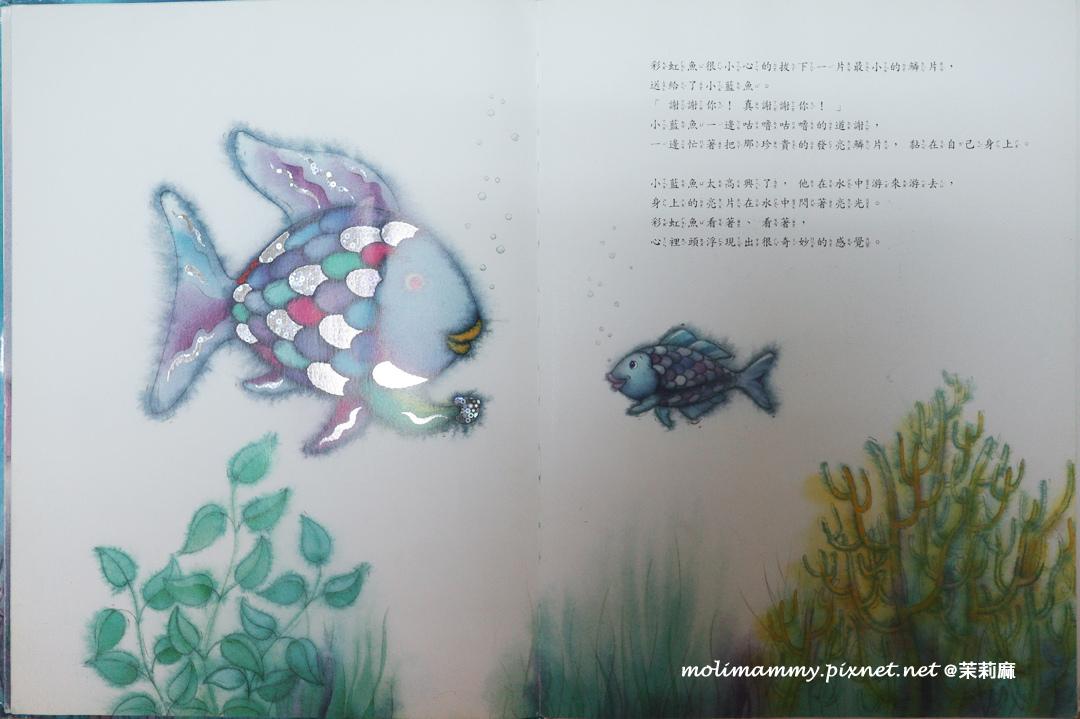 彩虹魚2_6.jpg
