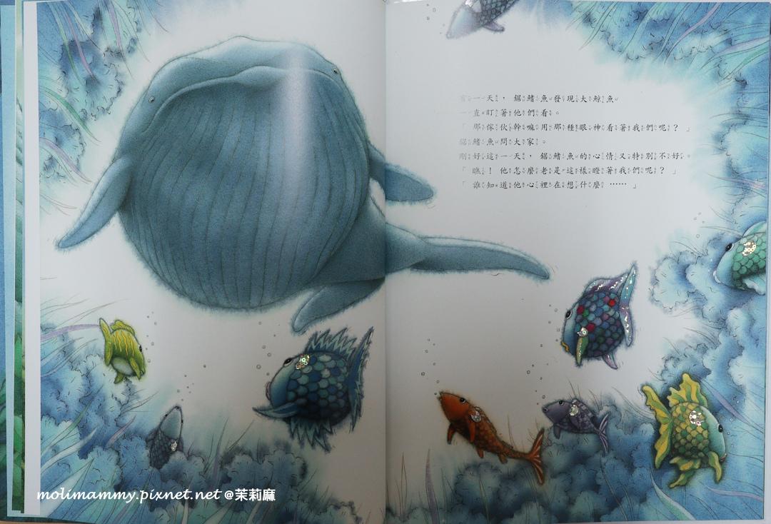 彩虹魚4_3.jpg