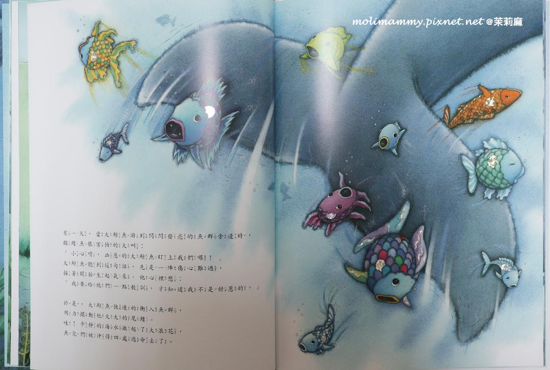 彩虹魚4_5.jpg