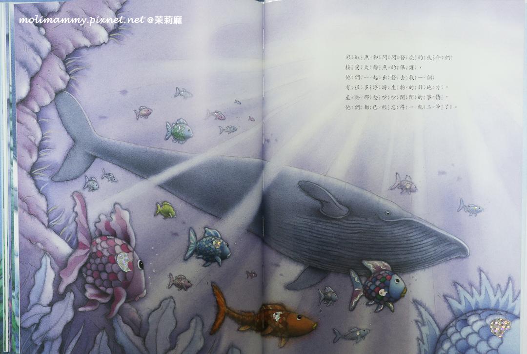 彩虹魚4_6.jpg
