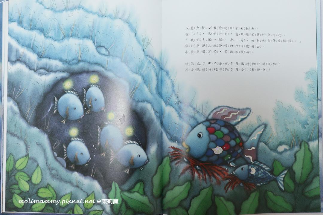 彩虹魚5_4.jpg