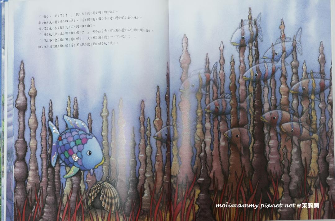 彩虹魚6_4.jpg