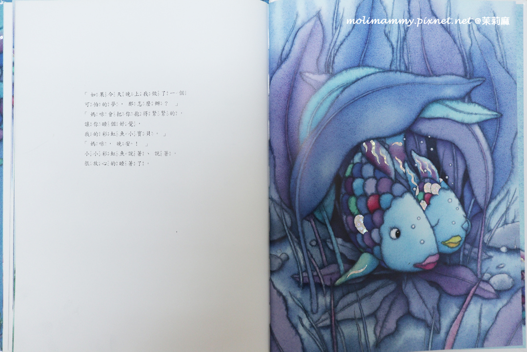 彩虹魚8_5.jpg