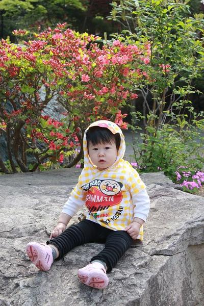 北海道 2010-06-01 033.jpg