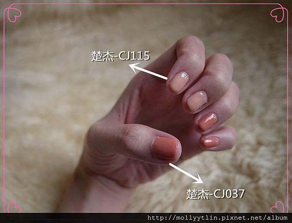 P1150068_副本.jpg