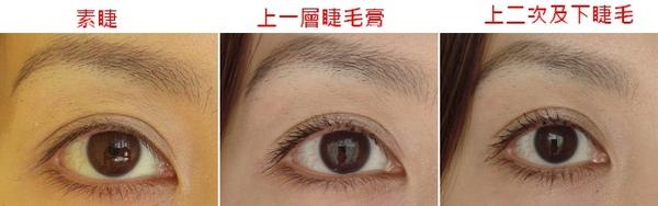 睫毛膏1.jpg