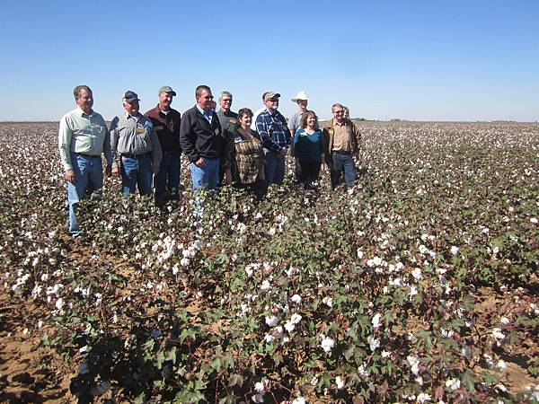 organic cotton growers-1.JPG