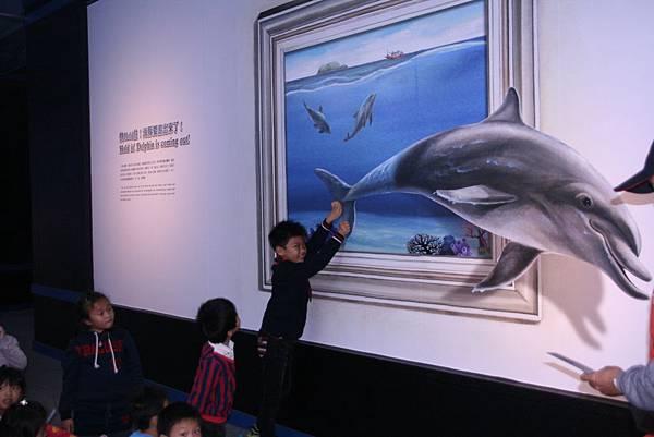 跳躍的海豚