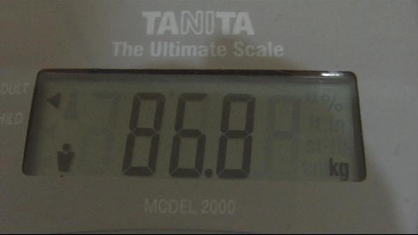 2009.05.17_莫名一言的減肥日記_0001.jpg
