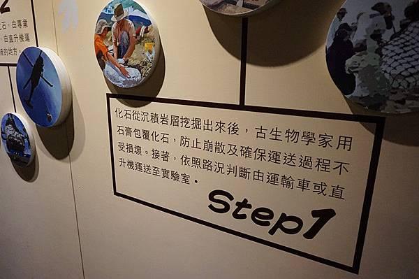 DSC05947_副本.jpg