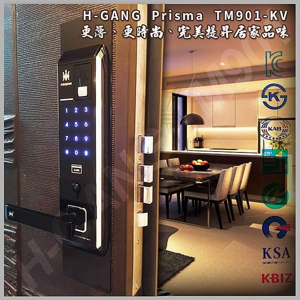 H-GANG TM9001 KV