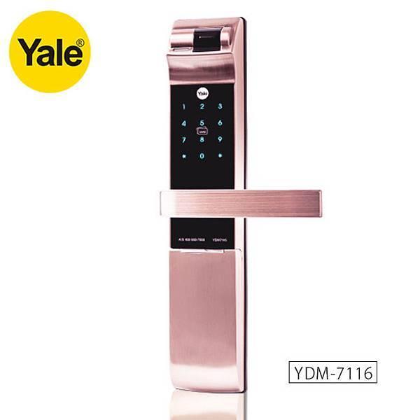 YDM7116-650.jpg