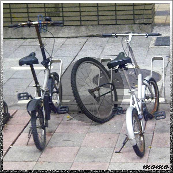 20110718小單輪-900x900.jpg