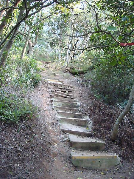也是一處不知通往哪的石階梯