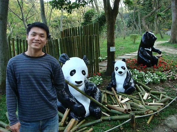 假熊貓....真的很假
