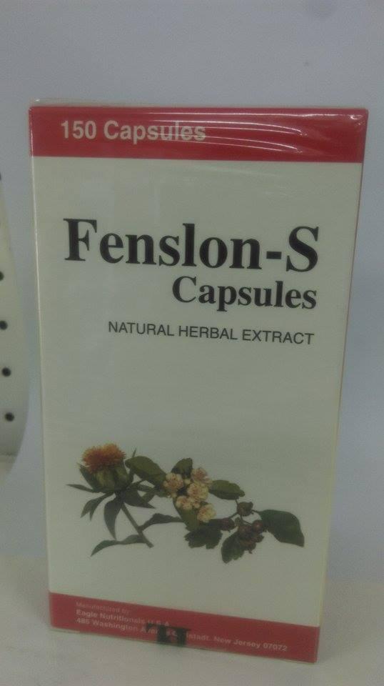 Fenslon-S 正面.jpg