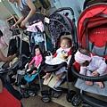 排一排的嬰兒車