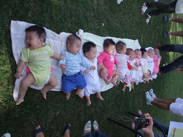 10個寶寶躺一排唷