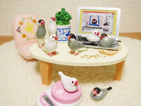 Re-ment 鳥生活b