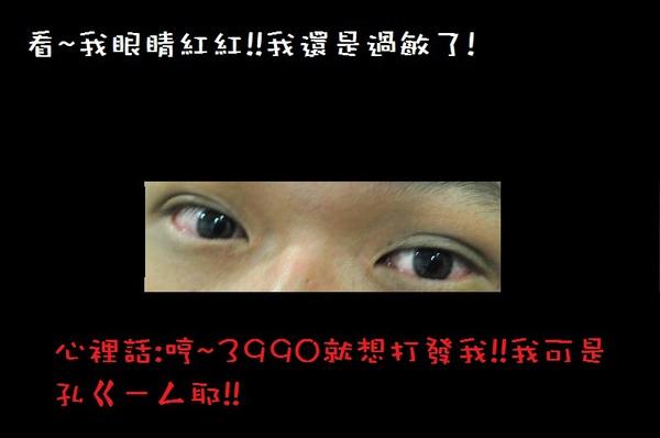 DSC_3442.JPG