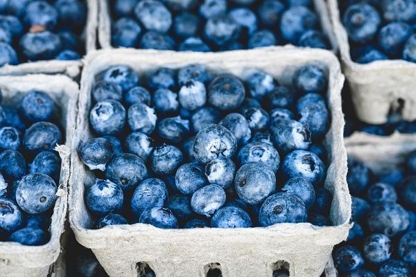 blue-16154_960