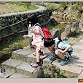 陽明山竹子湖海芋09