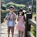 陽明山竹子湖海芋51