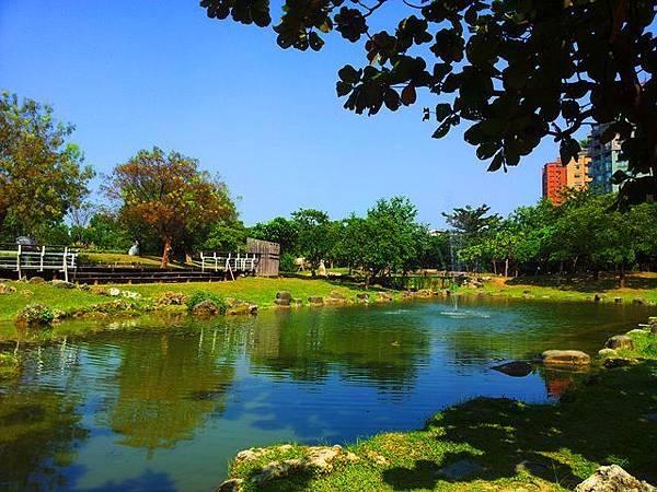 圖為:高雄自助婚紗推薦景點-原生植物園
