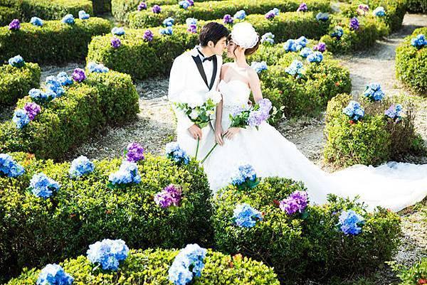 高雄婚紗風格推薦-繡球花海
