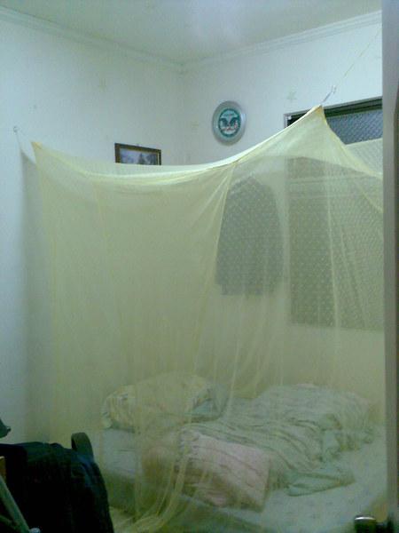 夢幻的蚊帳