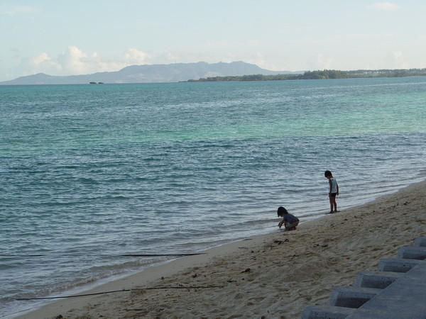 繼續看海吧!
