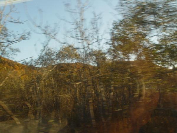 釧路濕原(4)