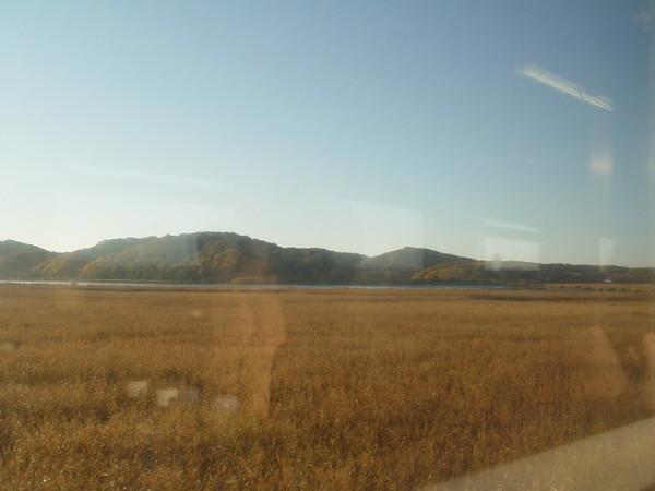 釧路濕原(7)