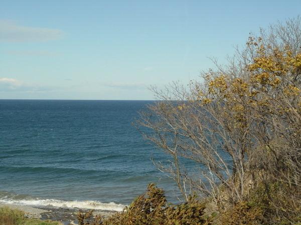 海邊的風景