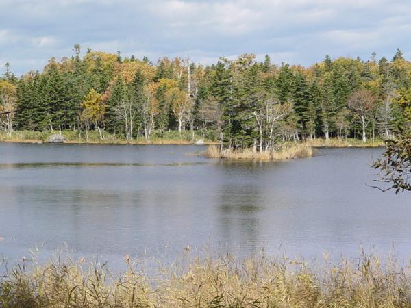 二湖(4)