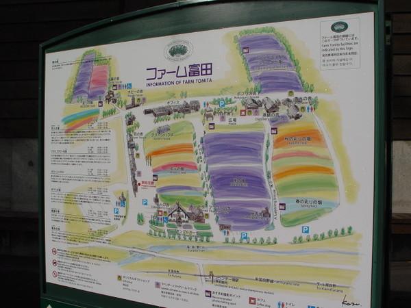 富田農場的地圖