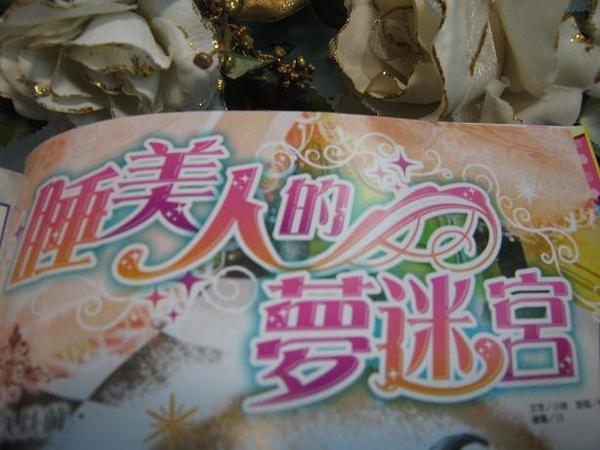 企劃3-夢迷宮.JPG