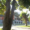 竹中校園3
