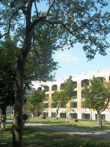 竹中校園7
