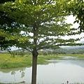 2014-04-17竹東河濱公園9