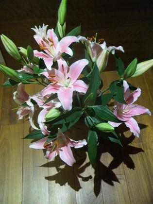2014-05-11母親節