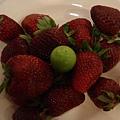 土耳其草莓吃到飽..好好吃喔..綠的那顆不知道是什麼..