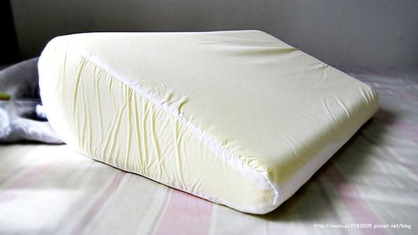 GreySa 格蕾莎【抬腿枕+輕鬆枕】-10-10